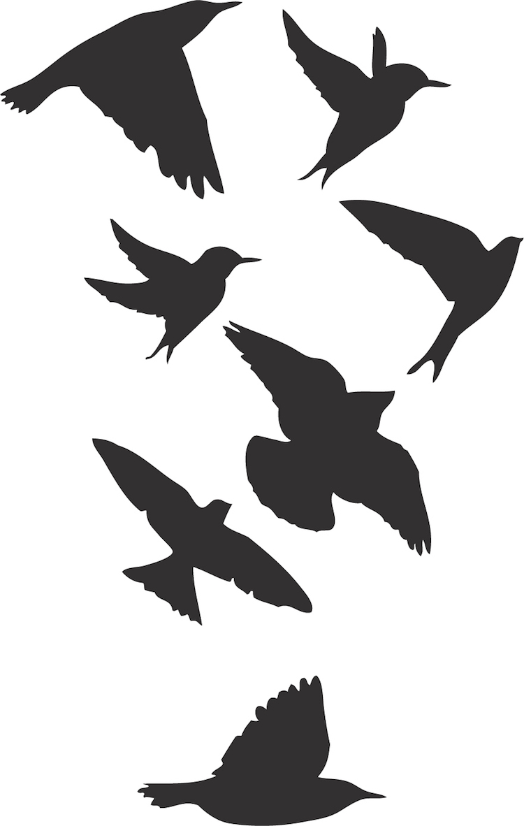 Birds wallpaper decal sticker black bird decals bird wall birds wallpaper decal sticker amipublicfo Gallery