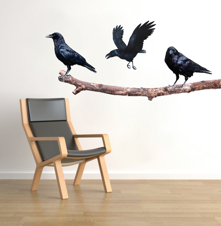 Crow on a Branch Wall Decals - Crow Wall Adhesive Murals - Removable Bird Wall Murals - Crow Wall Designs | Primedecals  sc 1 st  Prime Decals & Crow on a Branch Wall Decals - Crow Wall Adhesive Murals - Removable ...
