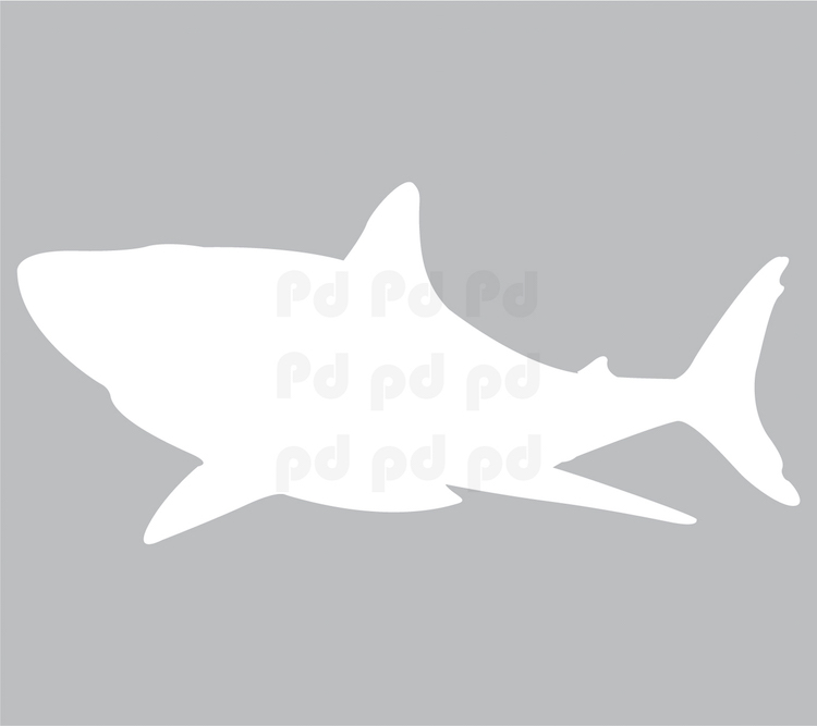 Shark Dry Erase Wall Decal Dry Erase Wall Decal Murals