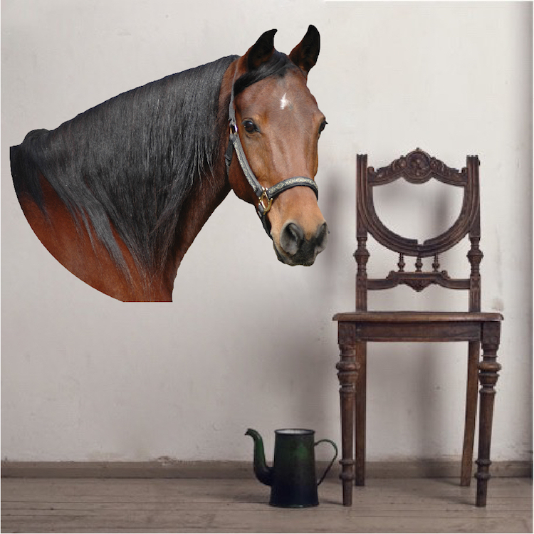 Horse Wall Murals horse head wall mural decal - animal wall decal murals - primedecals