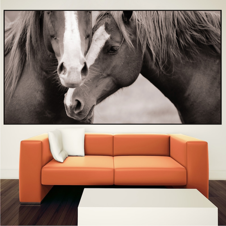 Wall Mural Decal horses wall mural decal - animal wall decal murals - primedecals