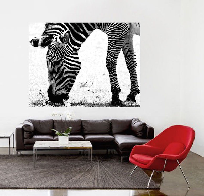 Zebra Wall Mural Decal   Large Decals   African Wall Decal Murals   Safari  Wall Designs   African Wall Decor | Primedecals