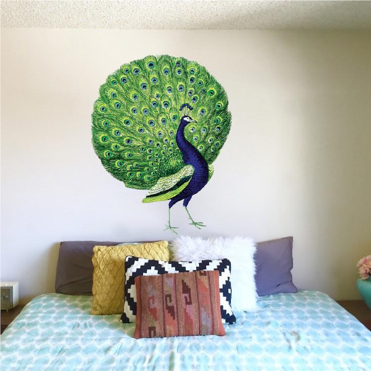 Peacock Wall Decal Mural Animal Adhesives Beautiful