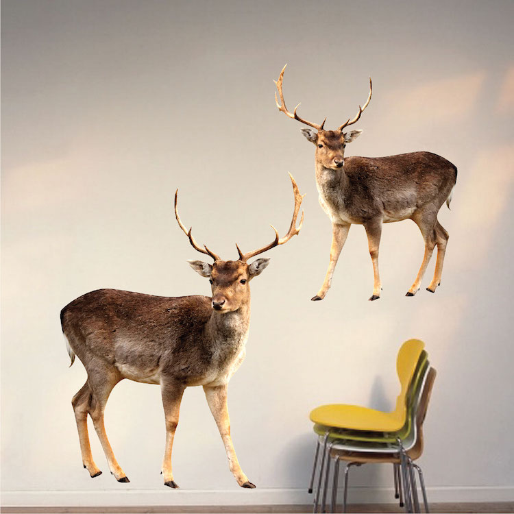 Buck wall mural decal wall murals primedecals for Deer wall mural