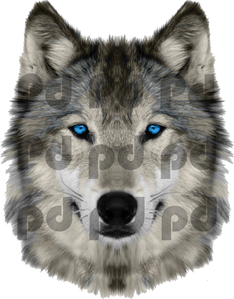wolf head wall mural decal animal wall decal murals wolf wall murals amp wolves wallpaper