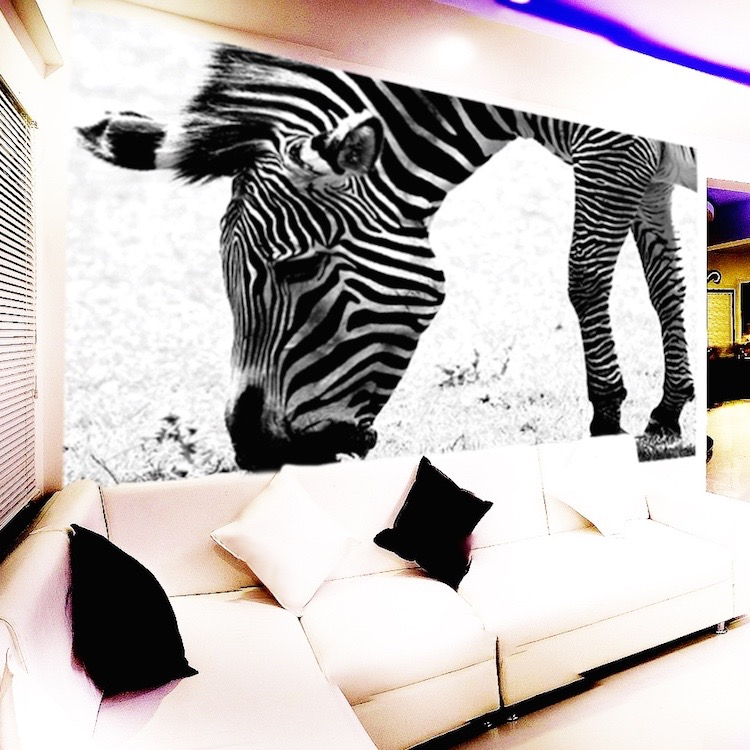 zebra wall mural decal large decals african wall decal jungle wall murals by colette safari jungle themed murals