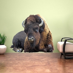 Bison Wall Adhesive Decal