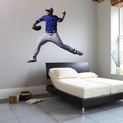 Baseball Player Wall Mural Decal