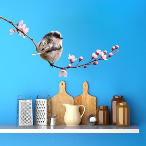 Cute Bird On a Branch Decal Mural