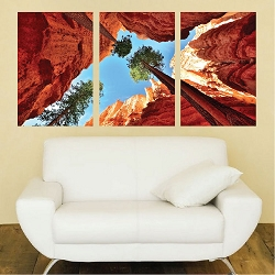 Canyon Wall Mural Decal