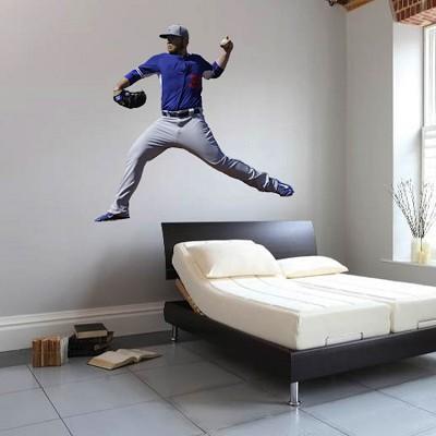 Baseball Player Wall Mural Decal