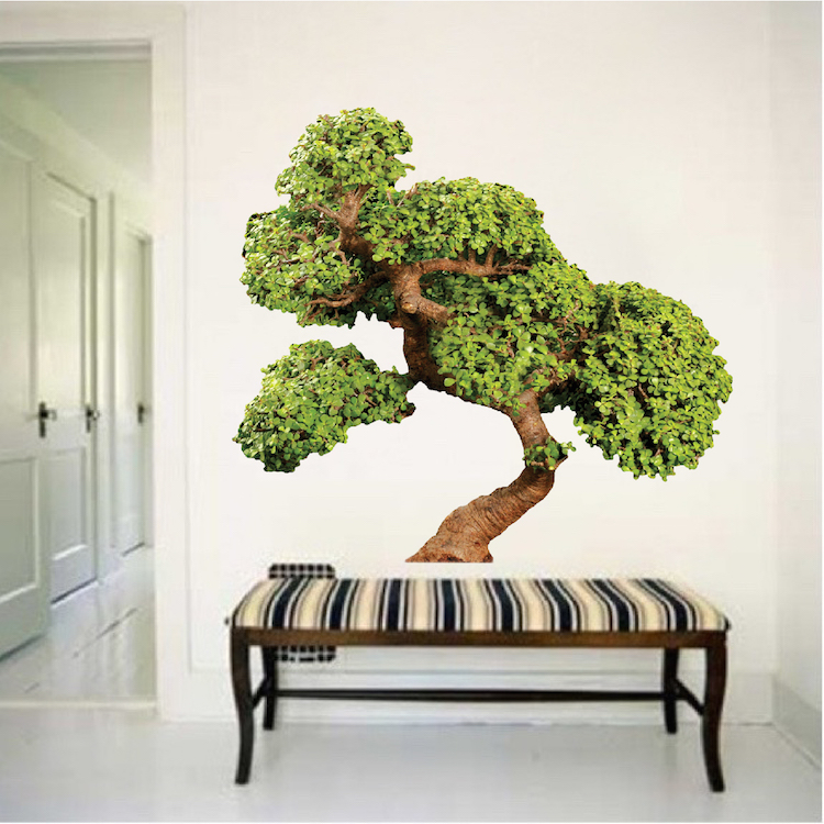 Bonsai Tree Wall Decal Mural Asian Tree Wall Graphic Decal Tree Wall Decals Large Tree Wall Decal Murals Primedecals