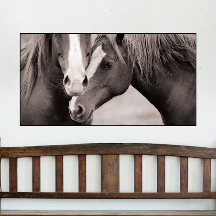 Well-liked Horses Wall Mural Decal - Animal Wall Decal Murals - Primedecals FZ46