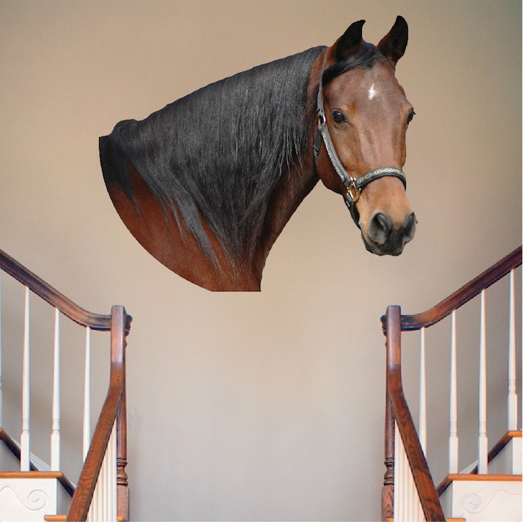 Wall Sconces Equestrian: Horse Head Wall Mural Decal