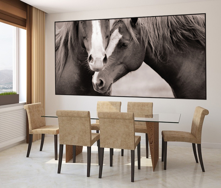 Horses Wall Mural Decal Animal Wall Decal Murals