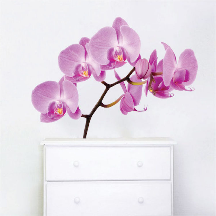 Orchid wall mural decal beautiful wall decal murals primedecals orchid wall mural decal mightylinksfo