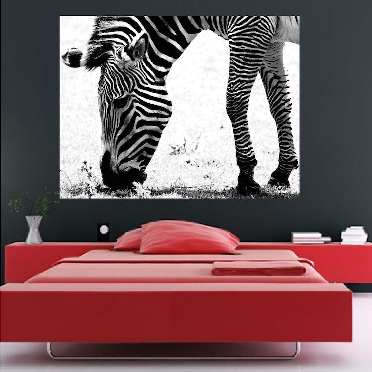 zebra wall mural decal - large decals - african wall decal murals