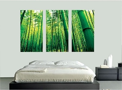 Bamboo Wall Mural Decal