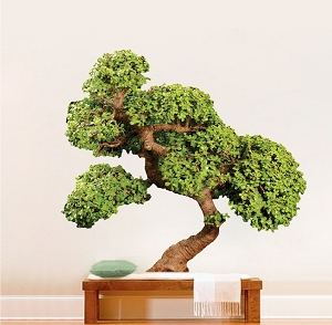 Bonsai Tree Wall Decal Mural