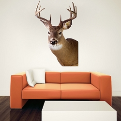 Deer Head Decal Design