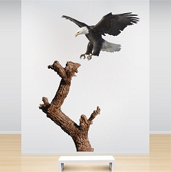 Bald Eagle And Tree Decal Mural