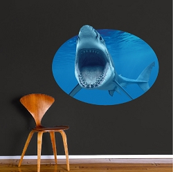 Shark Wall Mural Decal