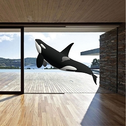 Orca Whale Wall Mural Decal