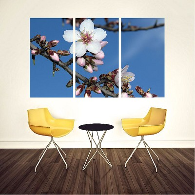 Flower Panel Wall Mural Decal