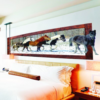 Horse Wall Decal Mural