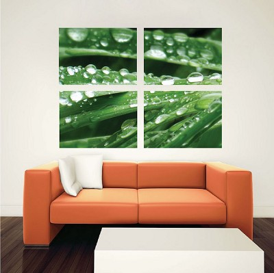 Grass Dew Wall Mural Decal